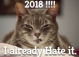 Happy New Year Cat Meme - happy new year memes 2018 new year wishes