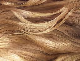 hair color products and trends l u0027oréal paris