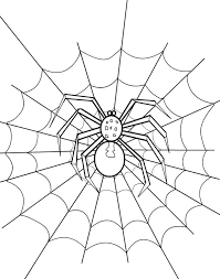 Spider Web Coloring Page Netart Spider Web Coloring Page