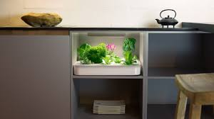 vegidair the herb garden in your kitchen by vegidair u2014 kickstarter