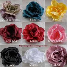 different color roses beautiful flowers picture free flowers photos color of