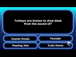thanksgiving trivia remix happy turkey day