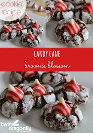 blossoms candy candy brownie blossom recipe dragonfly designs