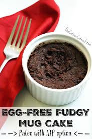 egg free fudgy mug cake paleo aip option fair trade month