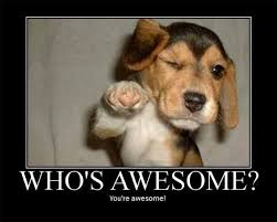You Are Awesome Meme - 35 top motivational meme with pictures images quotesbae