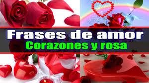 bonitas de rosas rojas con frases de amor imagenes de amor facebook corazones rosas rojas frases de amor para dedicar youtube