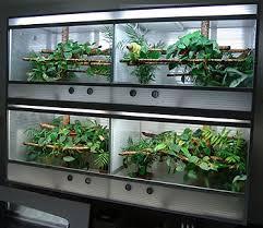 duplex terrarium enclosure plans reptile forums information