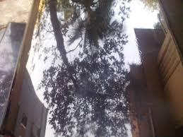Madhur Courier by Doorstep Spa Bhopal U0026 Flitz U0026glitz Car Spa Car Cleaning
