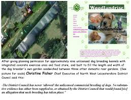 dog breeding law northwest and barking mad