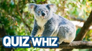 marsupial quiz whiz