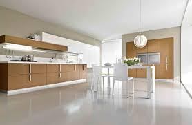 Sleek Kitchen Design Stylish Kitchen Floor Ideas Foucaultdesign Com