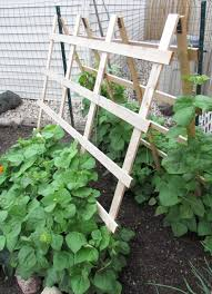simple green bean trellis u2013 outdoor decorations