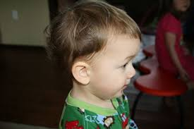 one year old hair cuts boys frugal fail 2 the dumb and dumber home haircut frugal living nw