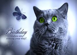 cat birthday card by st george salon of art llc handmade for
