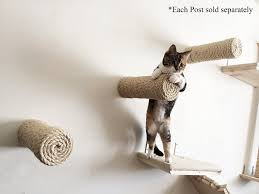 Cat Wall Furniture Amazon Com Catastrophicreations Floating Sisal For Cat Post Step