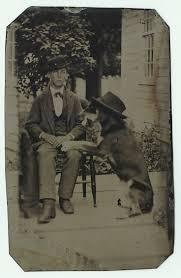 affenpinscher webster s 639 best dog foolery photos images on pinterest vintage dog