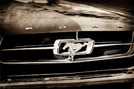 Black Mustang Grille Emblem 1965 Shelby Prototype Ford Mustang Grille Emblem Photograph By