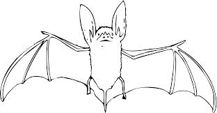 cute halloween bat clipart cute bat clipart outline