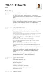 resume for software developer junior software developer with business intelligence resume for