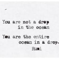 Rumi Memes - rumi thoughts capturing capacity