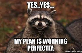 Yes Yes Yes Meme - yes yes my plan is working perfectly evil plotting raccoon