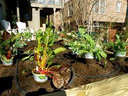How To Build A Large Raised Garden Bed - how to build a raised bed bonnie plants