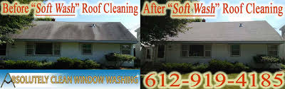 minnesota professional window washing blog minnesota professional minneapolis mn soft wash roof cleaning