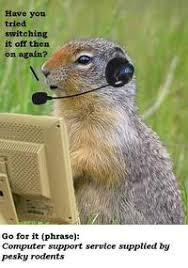 Gopher Meme - gopher it image gallery sorted by views know your meme
