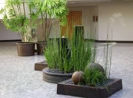 home interior plants interior plant design maintenance gardeners guild