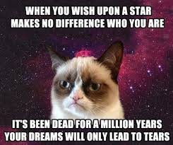Depressed Cat Meme - the zombie apocalypse is here newfire creations a creative agency
