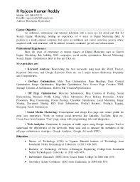 sample digital marketing resume sales professional resume examples