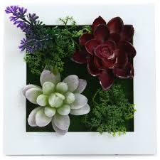 compare prices on 3d metope succulent plants online shopping buy