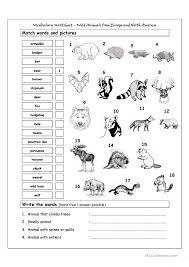 animals worksheet free worksheets library download and print