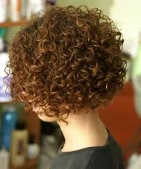 curly and short haircut showing back cute short curly hairstyles 2014 2015 short haircuts curly