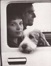 the incredible lightness of being on how we love our dogs quotes from milan kundera s the unbearable