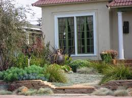 landscaping ideas for low maintenance garden home design san diego