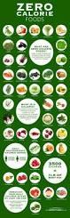 best 25 weight loss chart ideas on pinterest bullet journal
