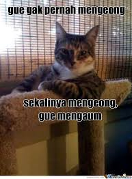 Meme Kucing - kucing by faslayer meme center