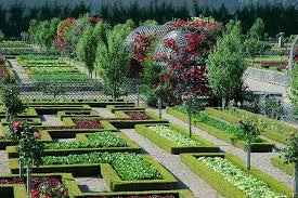 potager garden design ideas plans layout and tips for beginners