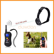 cat shock collar cat shock collar suppliers and manufacturers at