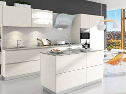 Kitchen Cabinets Modern Kitchen Design Pictures White Birch Rta Modern Kitchen Cabinets