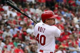 mlb rookie profile luke voit 1b st louis cardinals minor