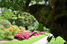 Botanical Gardens Seattle Beautiful Running Routes In Seattle Best Places To Run Thrillist