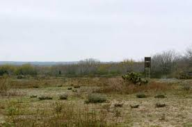 Natural Hunting Blinds Texas Whitetail Deer Hunting