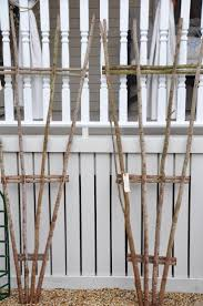 best 10 diy trellis ideas on pinterest trellis ideas plant