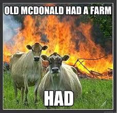 Revenge Memes - cows get their revenge random pinterest revenge cow and memes