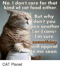 Soon Cat Meme - 25 best memes about soon cat soon cat memes