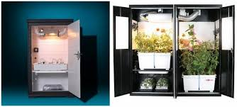 grow cabinet and grow box ideas u2013 how to develop plants indoors