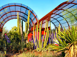 Scottsdale Botanical Gardens Desert Botanical Garden Cactus And Succulents