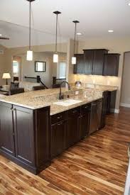 Kitchen Design Pictures Dark Cabinets Best 25 Kitchens With Dark Cabinets Ideas On Pinterest Dark